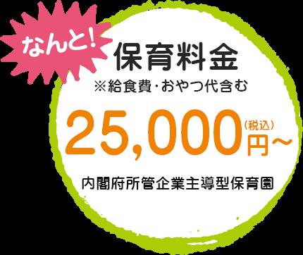 保育料金25,000円~